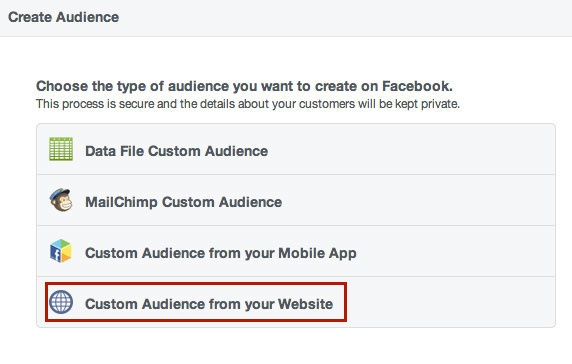 Create Custom Web Audience