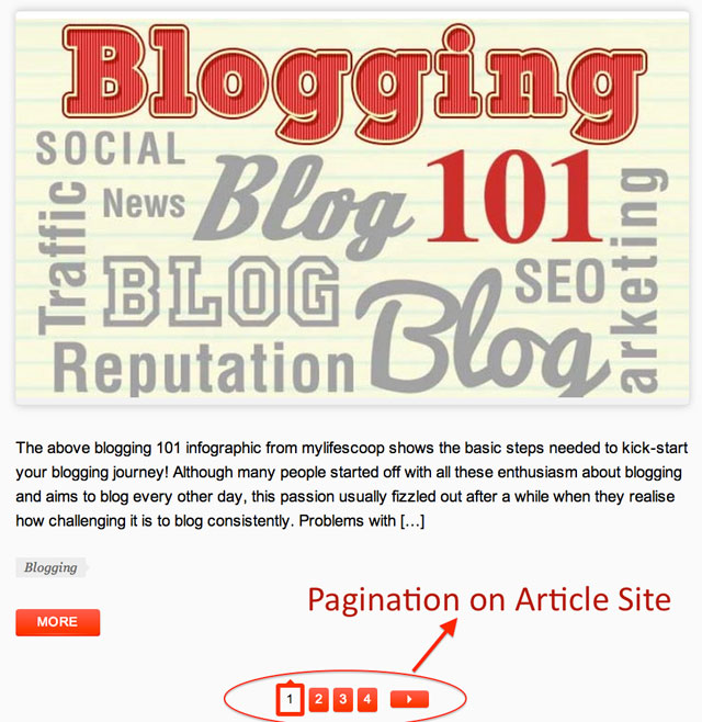 Pagination Article Screenshot
